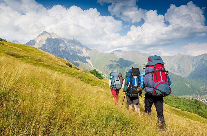 Scenic Hike Led by a Seasoned Trail Guide (1)