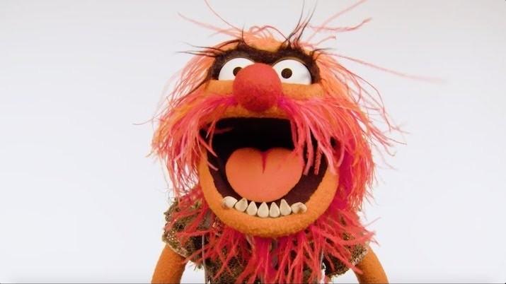 animal muppett