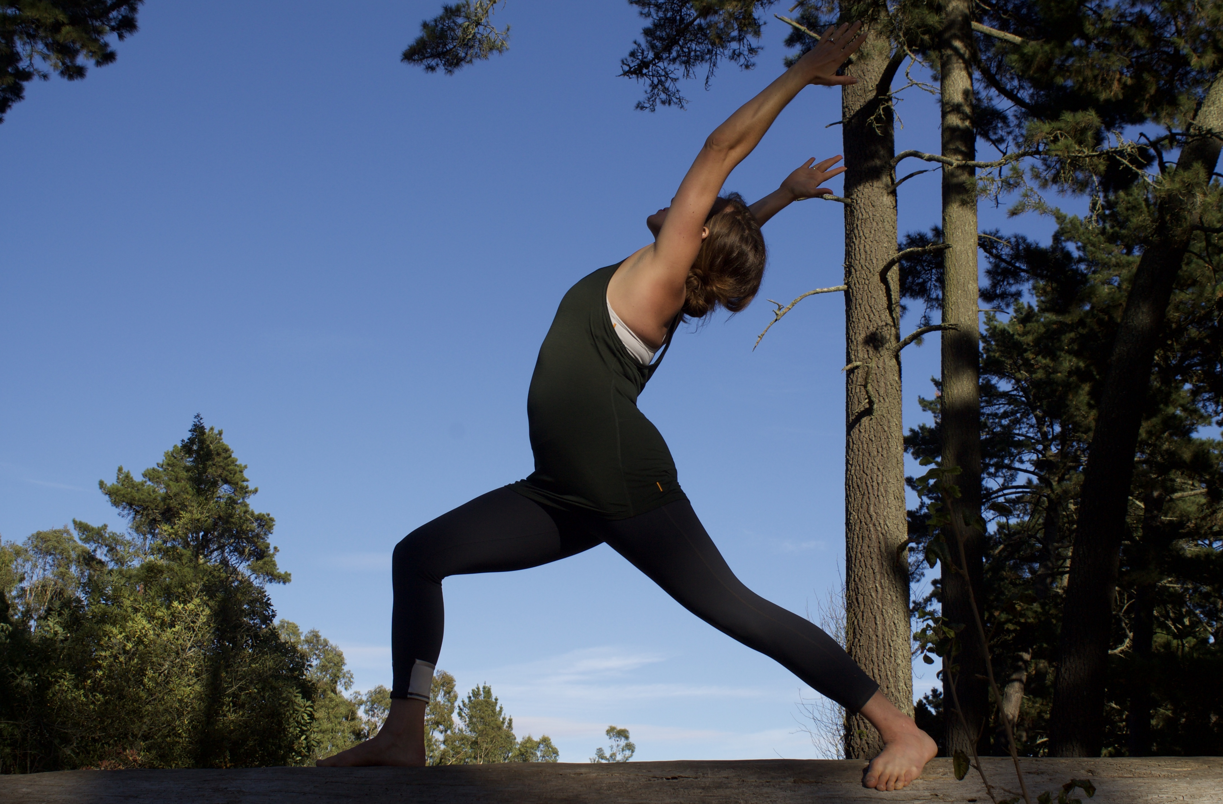 Exclusive Hike and Yoga Among the Redwoods: In Oakland, California (1)