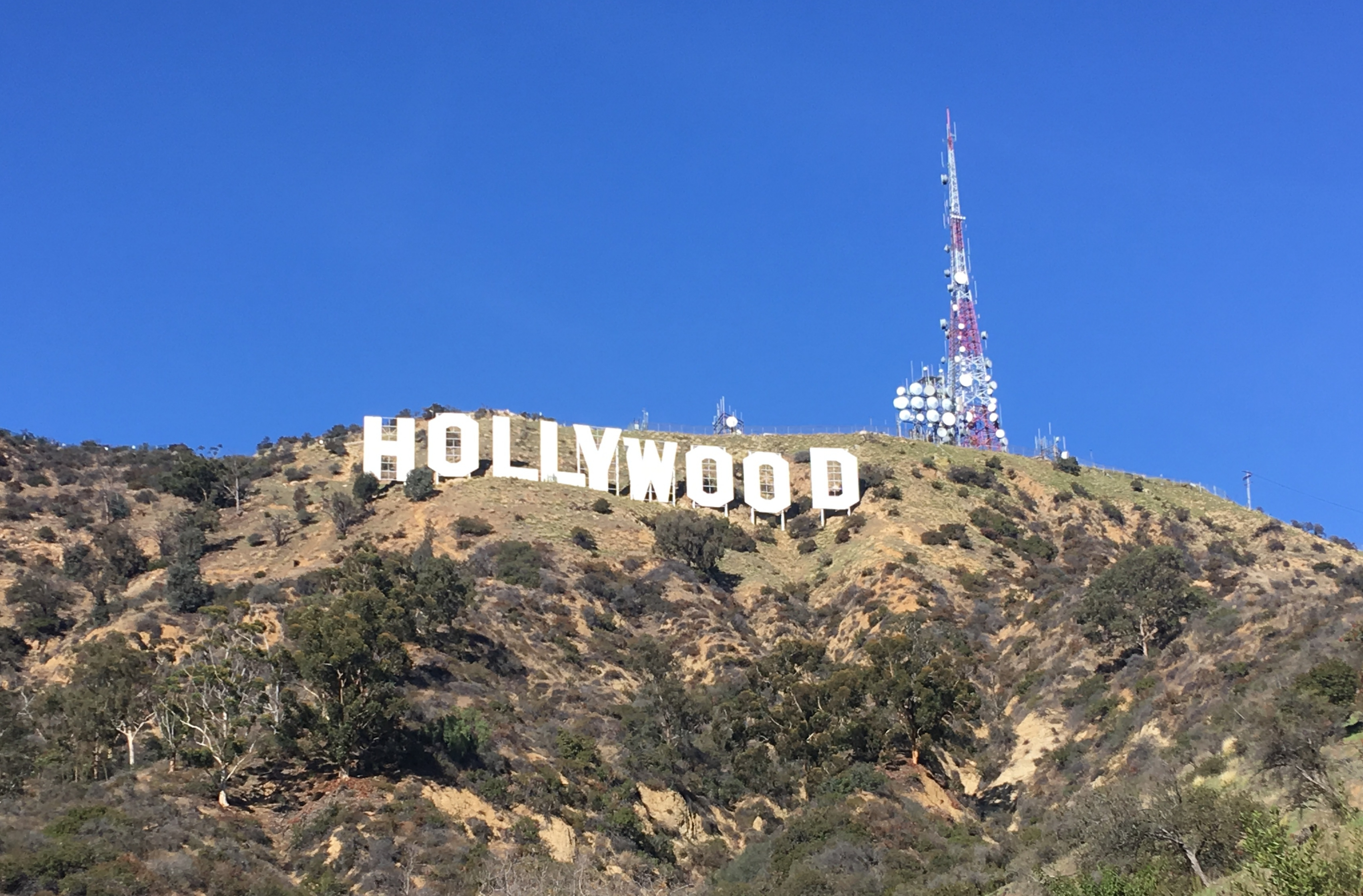 All Day L.A. Bucket List Private Tour, with Convenient Pick Up at Your Hotel or Location: In Los Angeles, California (1)