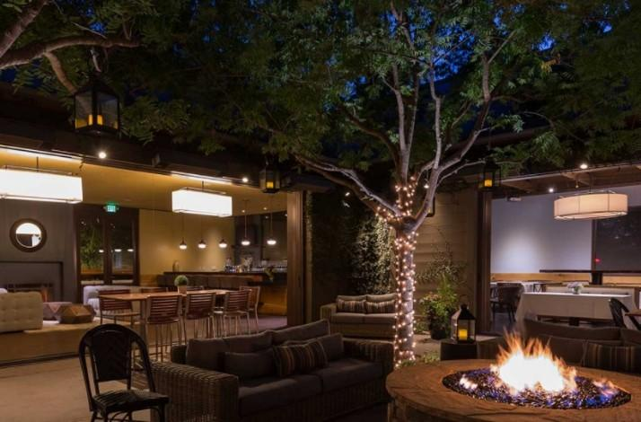 Educational Sake and Dinner Pairing Experience at Kitchen Collective: In Napa, California (1)