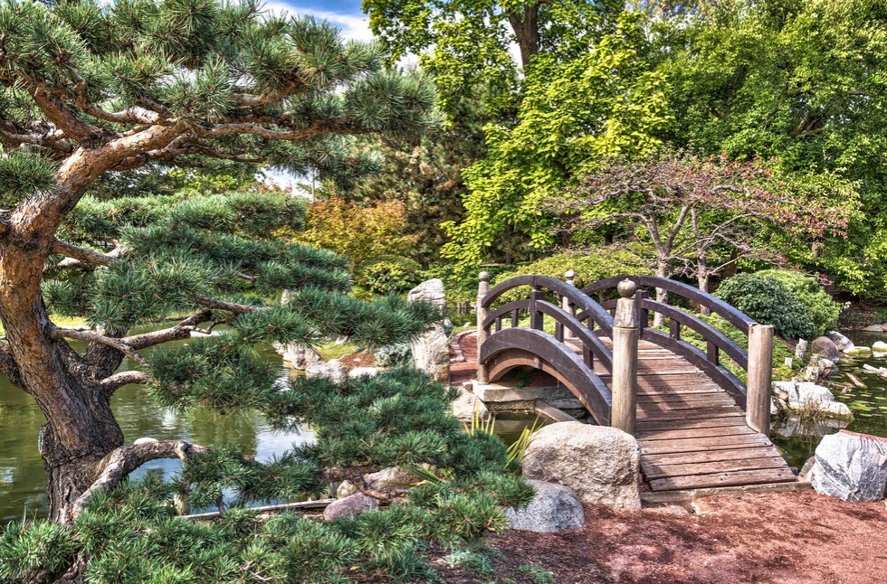 Meditative Nature Walk for Stress Relief: In Chicago, Illinois (1)