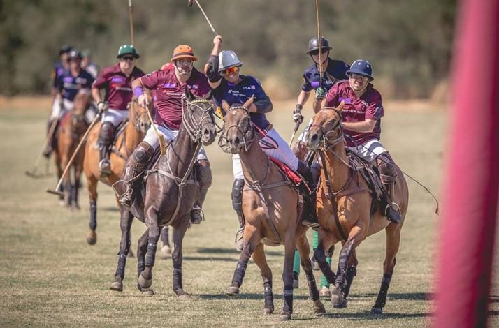 Private Polo Lesson from a Member of a Famed Argentine Polo Family: In Petaluma, California (1)