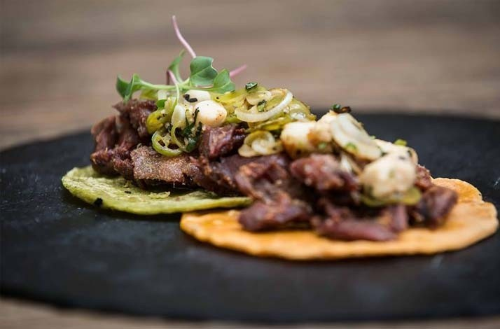 Taco Tasting with Pairing of National Wines and Mezcal: In Mexico City, Mexico (1)