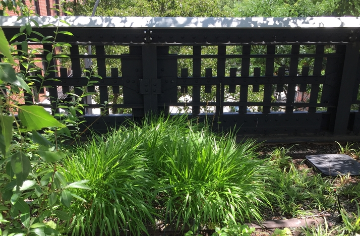 Guided Meditation Experience at the New York High Line: In New York, New York (1)