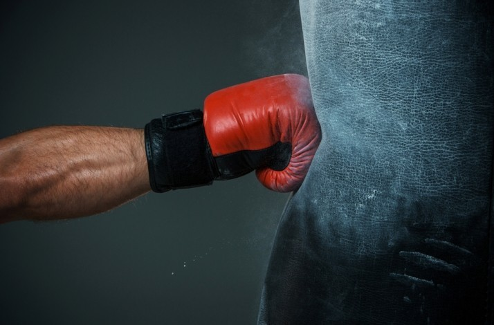 Family Boxing Classes with a Champion or  Former World Champion: In Mexico City, Mexico (1)