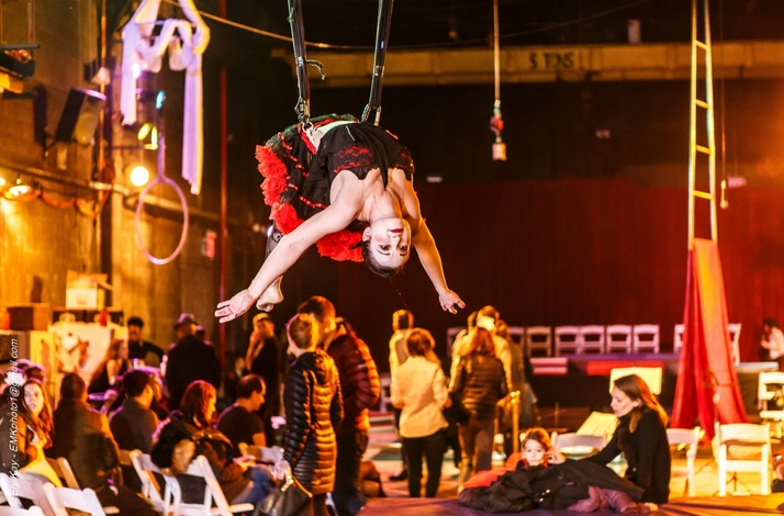 Aerial Bungee and Wall Running Taught by a Professional Aerialist/ Stunt Performer: In Brooklyn, New York (1)