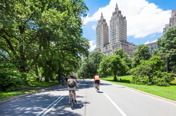Bike Manhattan with a Local NYC Expert : In New York, New York (1)