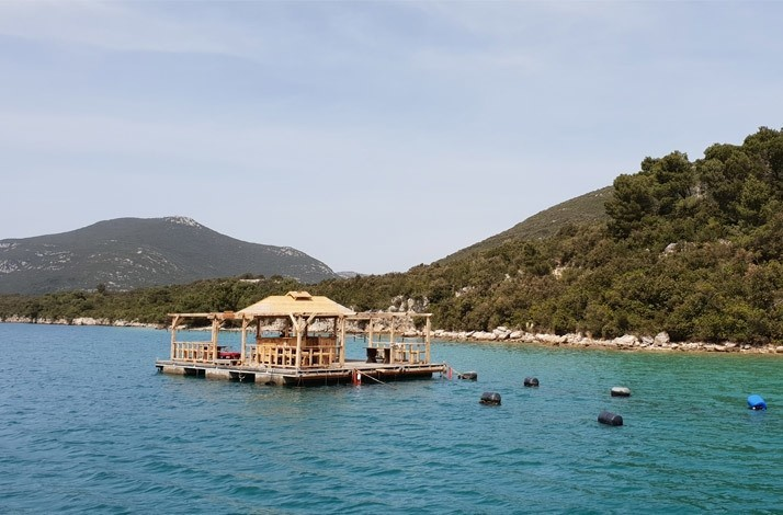 Learn to harvest oysters at a family-owned farm in a stunning Adriatic bay: In Dubrovnik-Neretva County, Croatia (1)