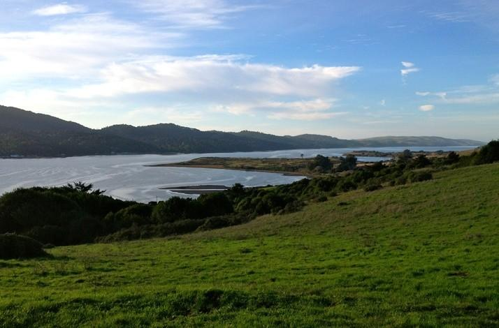 7 Culinary Wonders of West Marin with a Local Native: In Point Reyes Station, California (1)