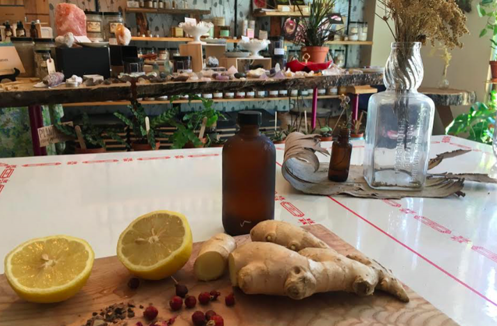 Fermented Soda Making Featuring Herbs, Barks and Berries of the Northeast: In Brooklyn, New York (1)
