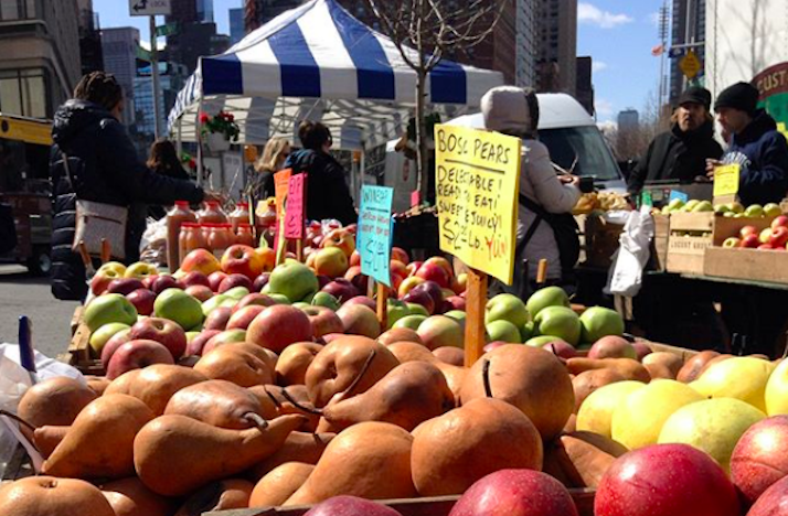 Exclusive Guided Tour of New York's Historic Union Square Greenmarket with GrowNYC : In New York, New York (1)