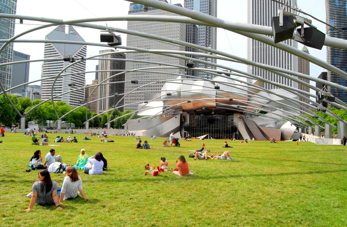 Private Personal Training Session in Millennium Park with AJ Canzolino, Owner of Urban Athlete: In Chicago, Illinois (1)