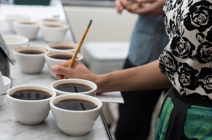 Demystifying Coffee Flavor: Understanding Olfaction and Gustation in a Private Workshop: In New York, New York (1)