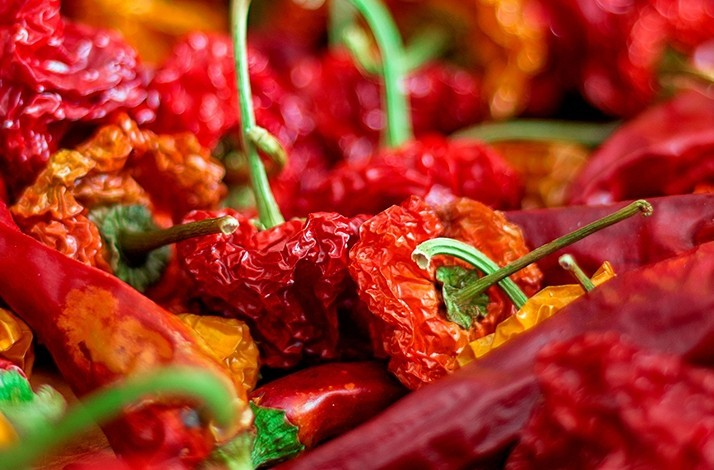Turn up the heat for a spicy pepper workshop with Fernando Davila: In Mexico City, Mexico (1)
