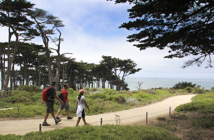 Lands Ends Hike and Beach Picnic Led by SF Local and Adventure Travel Expert : In San Francisco, California (1)