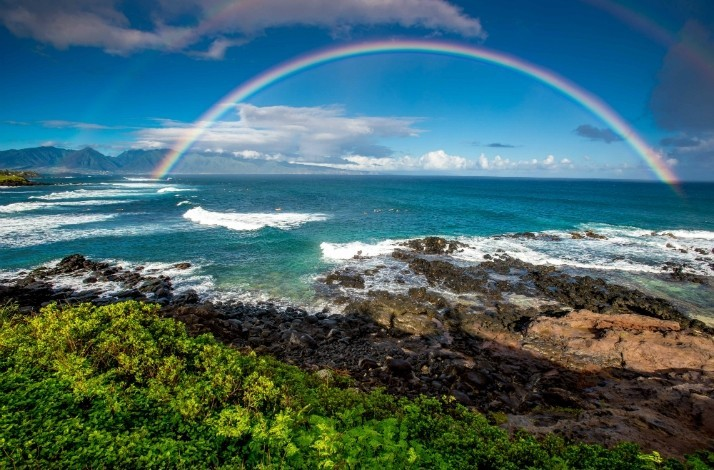 Discover Maui with an award-winning photographer: In Paia, Hawaii (1)