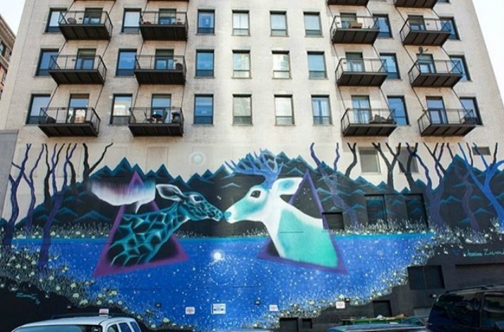 View Chicago's famous murals and secret gems during a walking tour: In Chicago, Illinois (1)