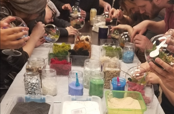 Create Your Own Terrarium in a Workshop with Fun With Plants: In Laguna Beach, California (1)