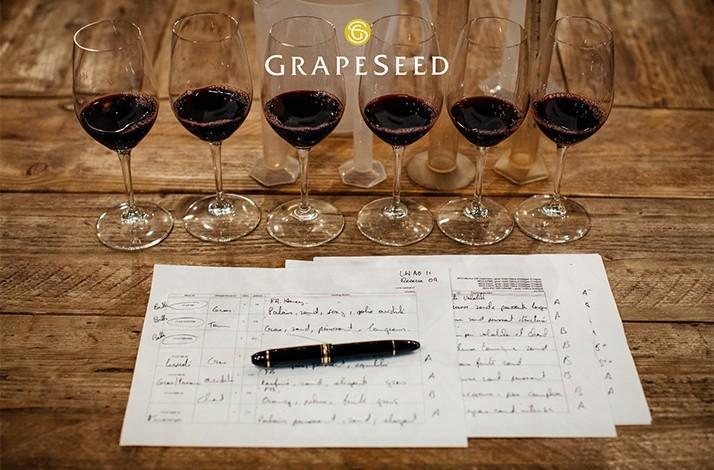 Small-lot Wine Tasting and Gallery Experience in Healdsburg: In Healdsburg, California