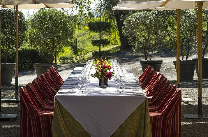 A Vineyard to Table Lunch at Francis Ford Coppola's Inglenook Vineyard: In Rutherford, California (1)