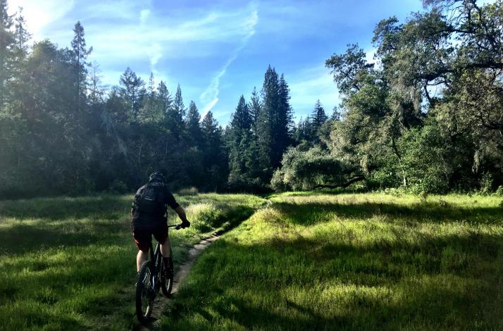 Santa Cruz Mountain Bike Tour with a IMBA Certified Professional Mountain Bike Guide: In Santa Cruz, California (1)