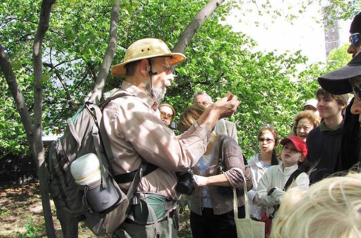 Foraging with the Wildman in Central Park: In New York, New York