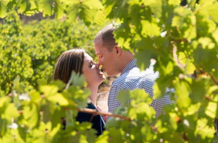 Romantic Photography Session and  Wine Country Tour: In San Rafael, California (1)