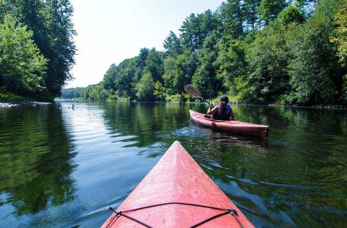 Delaware River Kayak and Wine Day Trip from NYC: In New York, New York