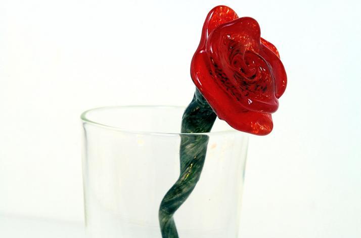 Glass Flowers: In Dedham, Massachusetts