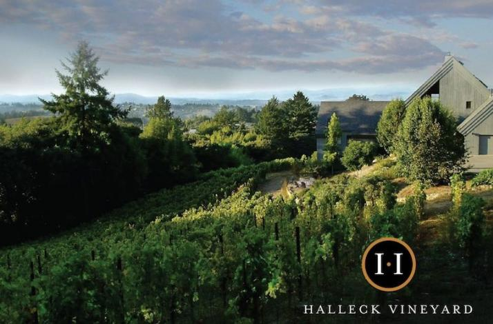 An Afternoon at Halleck Vineyard: Wine Exploration and Gourmet Lunch with the Winery's Founders: In Sebastopol, California (1)