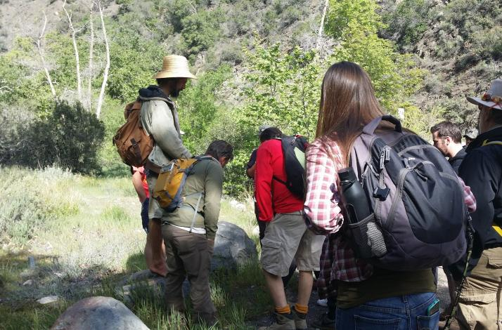Intro to Foraging in Southern California: In Irvine, California (1)