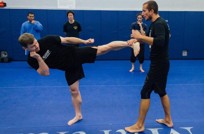 Private Kickboxing Lesson: In Los Angeles, California (1)