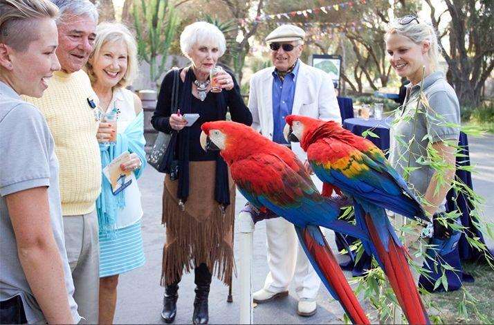 A Career Caring for Animals: Lunch and Learn with a Zoo Curator: In Santa Barbara, California