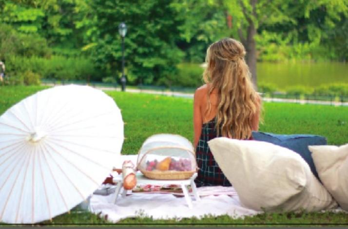 Perfect Picnic Experience in Central Park NYC: In New York, New York (1)
