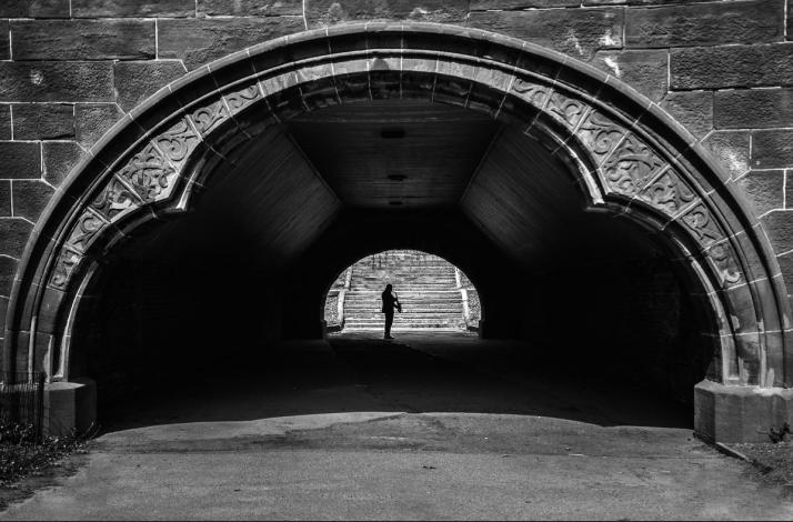Private Photography Walk and Lesson in Central Park: In New York, New York (1)