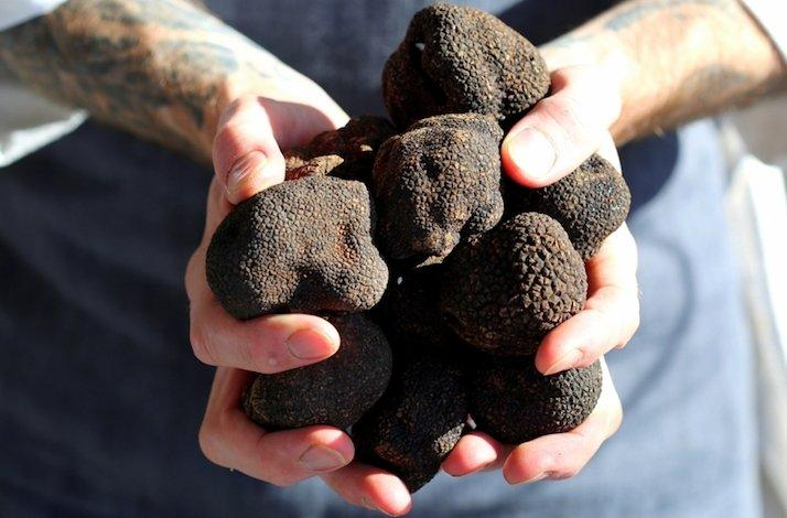 Full Black Truffle Preparation and History with Four-Course Meal by Fine Dining Chef: In San Francisco, California