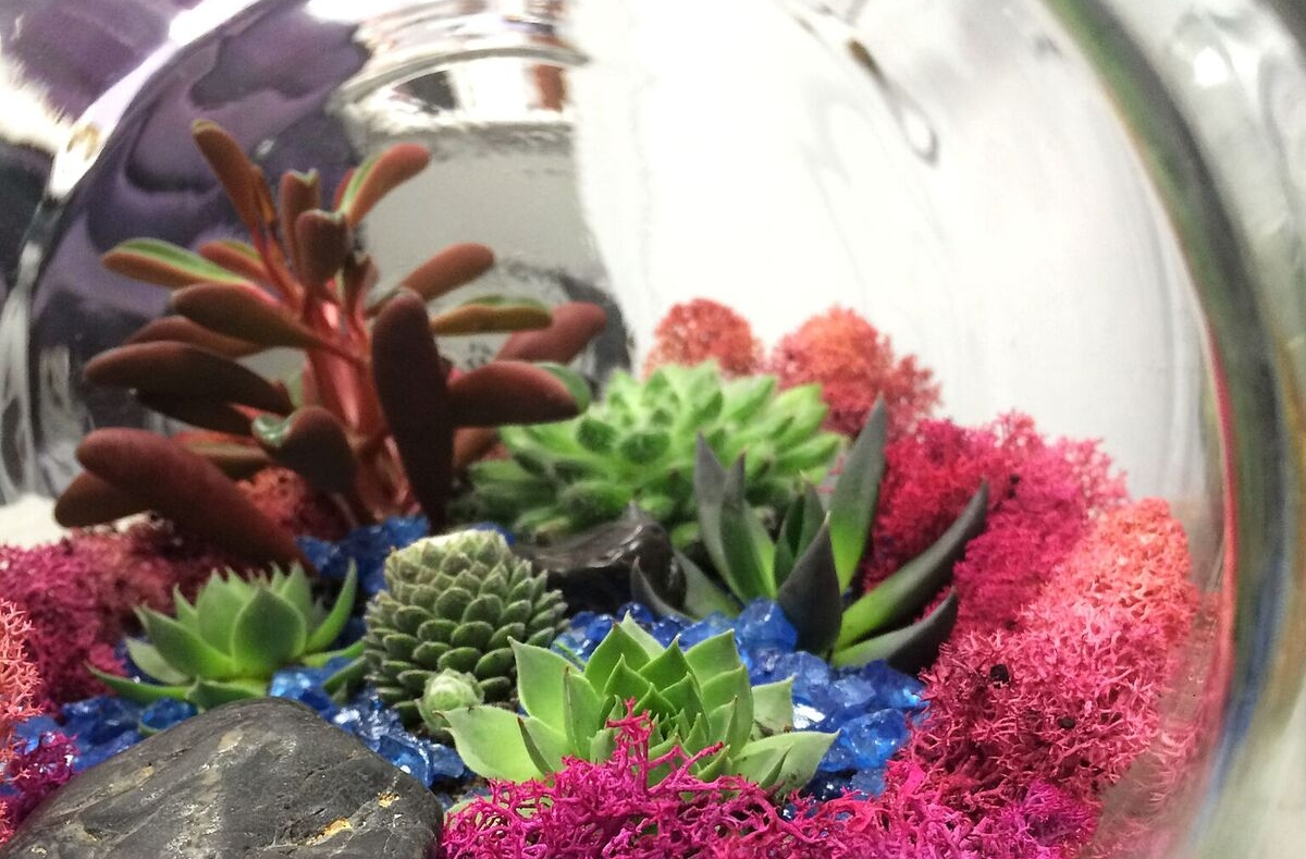 Mother's Day Terrarium Class for Two: In New York, New York (1)