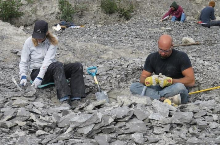 Step Back in Time: Private Fossil Hunt and Nature Preserve Tour with a Paleontologist: In Buffalo, New York (1)