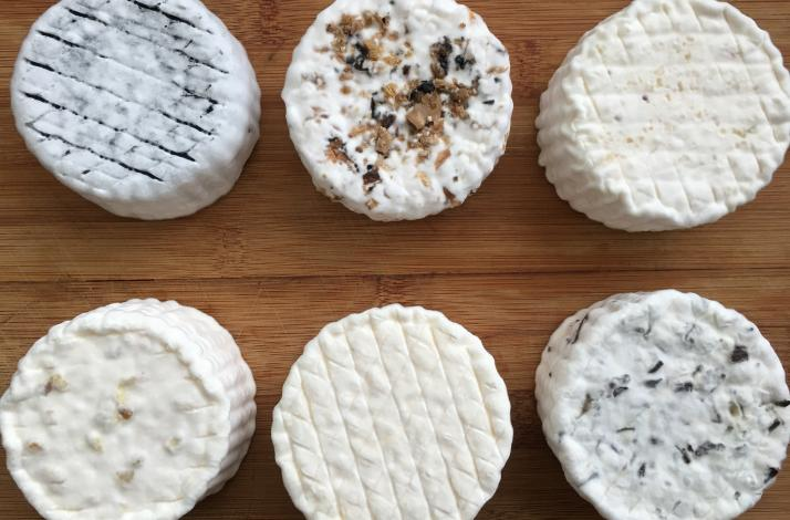 Craft Camembert at Home with the Founder of FARMcurious: In Oakland