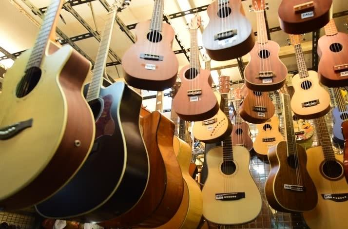 A Unique Personal Guitar or Ukulele Buying Experience: In Los Angeles, California