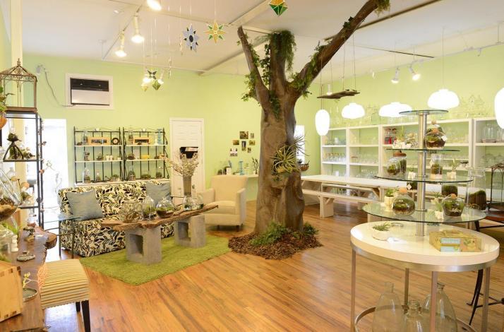 Moss Terrarium Workshop with Twig Terrariums: In Brooklyn, New York (1)