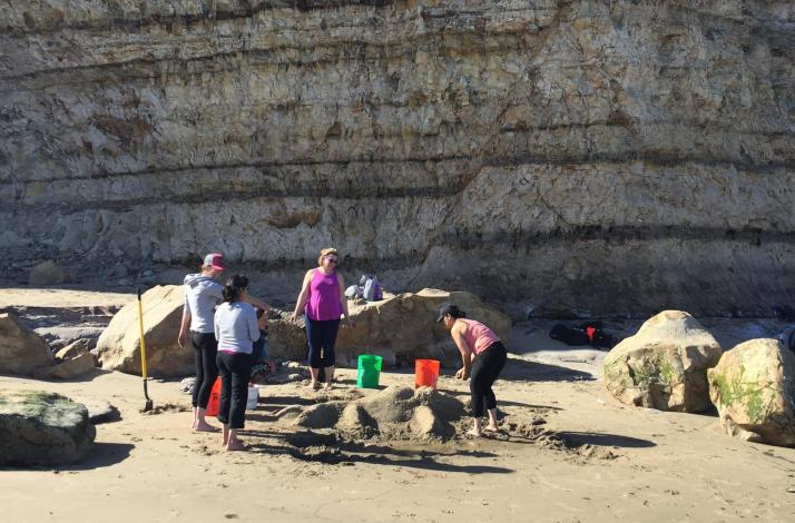 Sandcastle Building with Mountain Sea Adventures: In Santa Cruz, California (1)