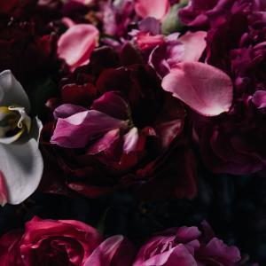 Responsive image Roses Et Pivoines