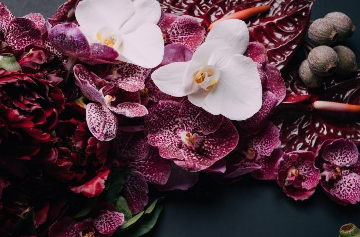 Floral Design Workshop with Roses Et Pivoines: Modern Floral Design: In Miami, Florida (1)