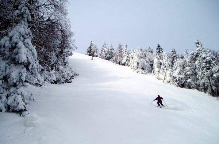 Whiteface Mountain Ski Or Snowboard Trip With Nyc Snow Bus Bus And Lift Ticket In New York New York