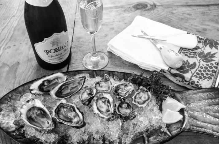Bodega Bay Oyster Co: Owner Led Tasting and Tour: In Petaluma, California
