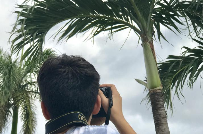 Create an Artistic Keepsake  with Your Own Miami Photos — Double the Fun, Pictures and  Art: In Doral, Florida (1)