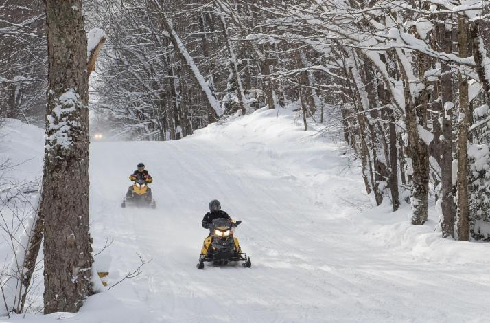 Four-and-a-Half-Hour Adirondack Snowmobile Tour: In Forestport, New York