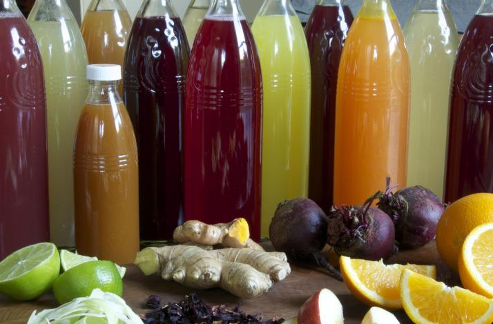 Craft Your Own Kombucha: Learn to Make Probiotic Beverages and Tour with Co-Founder Jessica Prentice: In Berkeley, California (1)